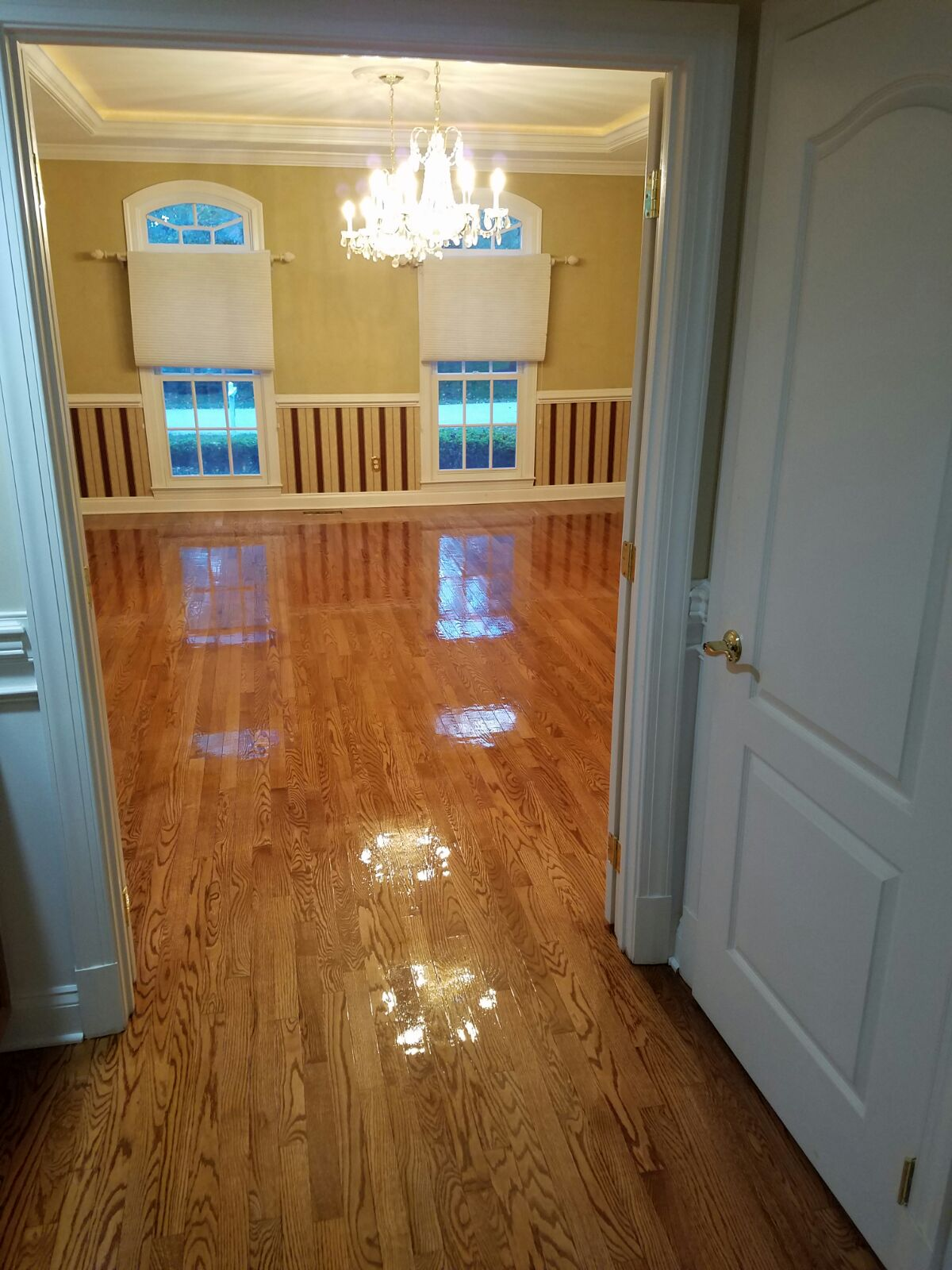 maryland flooring company shore side 022